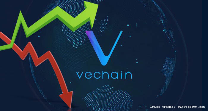 Vechain Future Development