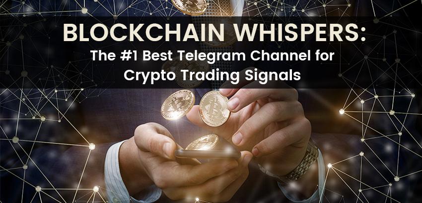Blockchain Whispers: The Best Telegram Channel For Crypto
