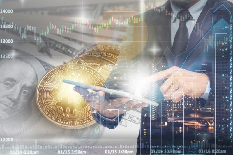 Crypto Asset